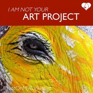 NOMBL Art Project
